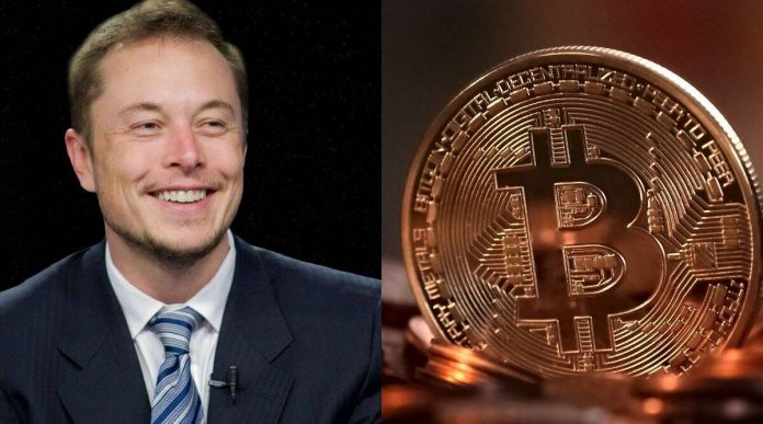 What is Elon Musk's evaluation on Bitcoin? Why does Elon Musk believe that Bitcoin is not fit to be the real economy?